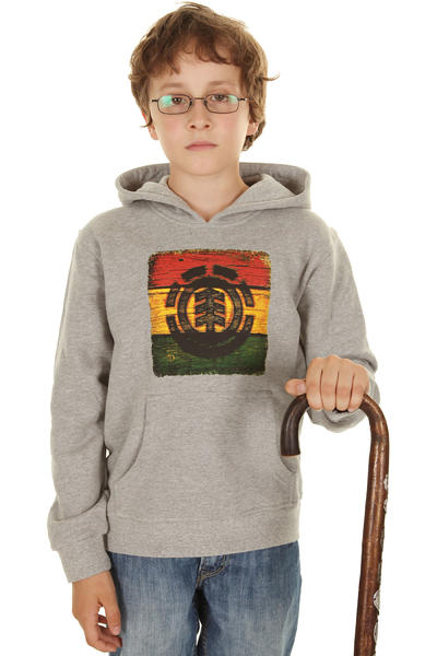 Element Branded Hoodie kids (grey heather)