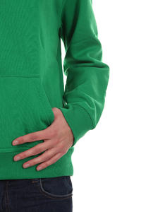 Quiksilver Corporate Lettring Hoodie (field green)