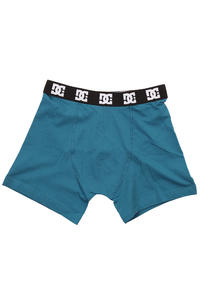 DC Feel It Boxershorts (pacific blue)