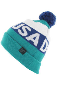 DC Chester Beanie (columbia green)
