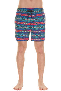 Globe Dion Cheat Life Boardshorts (teal)