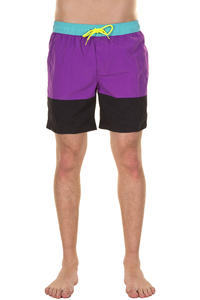 Globe Dana Panel Boardshorts (purple)