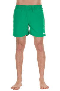 Quiksilver Single Days Boardshorts (greeny)