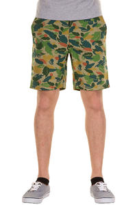 Dickies Sunray Shorts (green)
