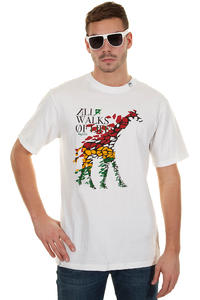 LRG All Walks Of Life T-Shirt (white)